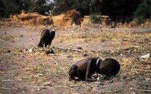 Seorang balita roboh tak mampu menggapai kamp makanan PBB, kematiannya ditunggu burung bangkai yang siap memangsanya