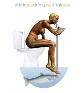 Urin sebagai pupuk?